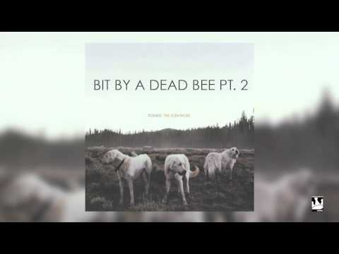 Foxing - Bit By A Dead Bee Pt. 2 (Audio)