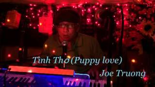 Tình thơ Puppy love   Joe Truong VM