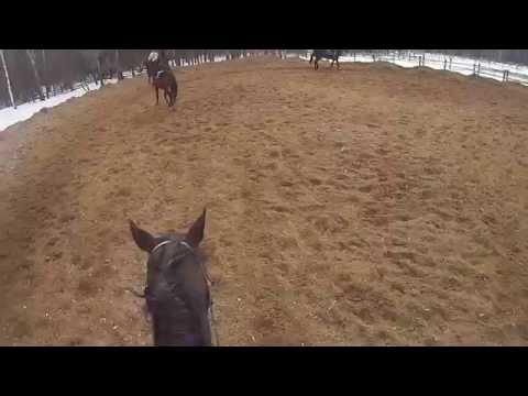 sony hdr-as20b видео