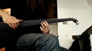 Red Hot Chili Peppers Coffee Shop Bass Cover