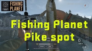 Fishing planet Pike Spot