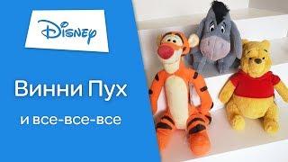 ⭐Герои из мультфильма Винни Пух ⭐ Детальный обзор игрушек ♥Toyexpress.com.ua♥