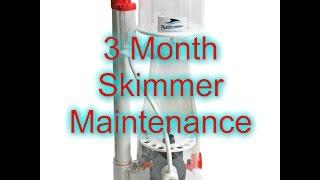 Protein Skimmer Maintenance | Beginner Guide To Saltwater Aquariums