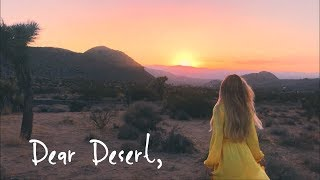 Dear Desert Storm,