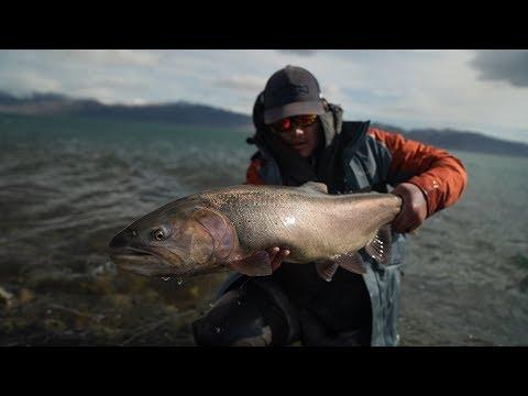 Spring Fly Fishing Pyramid Lake (part 2) HUGE FISH EATS ON VIDEO