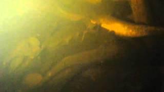 Подводная охота(, 2011-01-23T23:51:30.000Z)