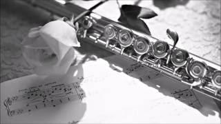 Túy Hồng Nhan - OST Tân Thủy Hử 2011 (Flute cover)