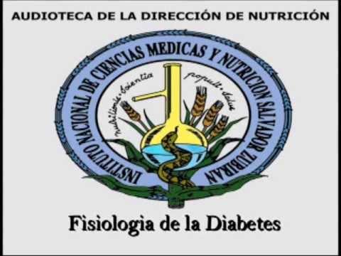 Fisiologia de la Diabetes