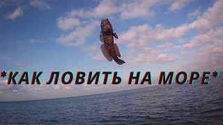 Морская рыбалка Клюнь хоть что то Золотая бухта Анапа