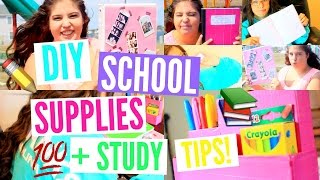 DIY School Supplies/ Organization, Supply Haul & Study tips!