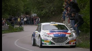 Rally Targa Florio 2018 - Peugeot 208 T16 e Paolo Andreucci - Highlights
