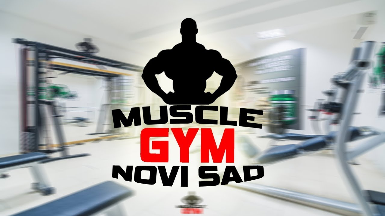 Muscle Gym Novi Sad