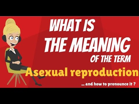 Asexually reproduce meaning