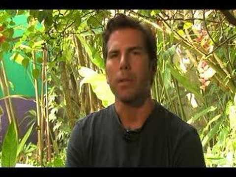 Saving Mono Titi Documentary Promo Trailer (Costa Rica)