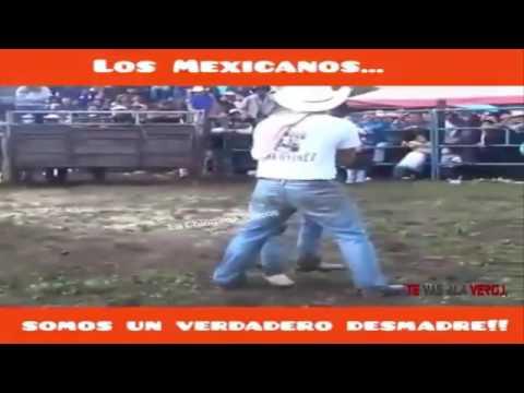 Los Mexicanos Somos Un Verdadero Desmadre !!!! Te Vas A La Vergui