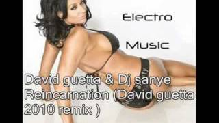 David guetta & Dj sanye Reincarnation (David guetta 2012 remix ).avi