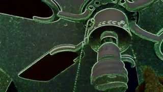 My ceiling fans In Green Neon Lights!