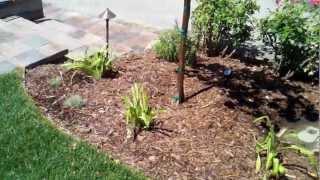 Thousand Oaks Landscape Design, Pavers, Redwood Patio Cover, Lighting, & Sprinklers