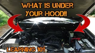 Car Learning  Whats Under Your Hood?