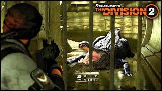 5 НОВЫХ ПАСХАЛОК в THE DIVISION 2! (Шарик Пенивайза, Аллигатор, Red Storm)
