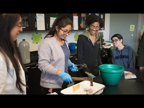 Student-led outreach to boost diversity in STEM