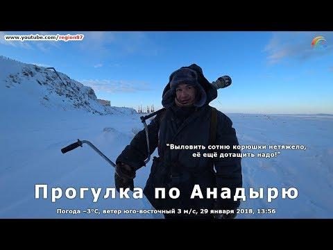 Беседую с рыбаком. Анадырь. Чукотка. Крайний Север. Дальний Восток. Арктика. №132