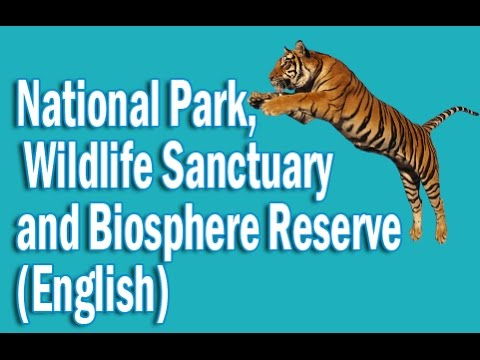 National Park, Wildlife Sanctuary and Biosphere Reserve of India in English | Static GK
