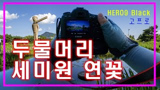 양평 두물머리 세미원연꽃 축제 HERO9 Black 고…