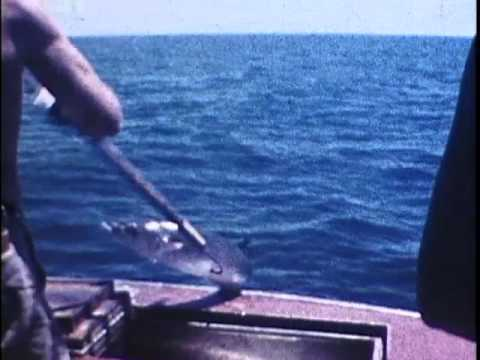 PAPHA Events 1950's Gerald Curry home movies, Offshore fishing,sailfish, tankers, weigh in