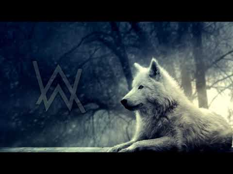 Alan Walker - The Spectre ♫ 10 HOURS