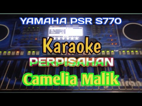Karaoke Perpisahan Camelia Malik