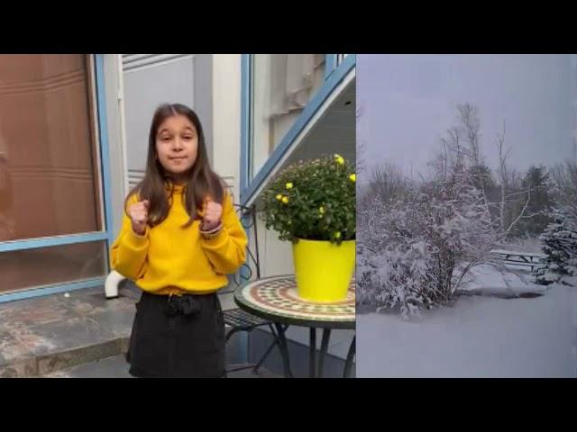 Изображение предпросмотра прочтения – СофияВеличко читает произведение «Зима» С.А.Есенина
