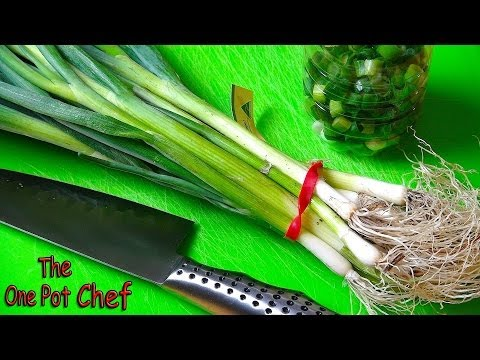 Store Green Onions for Months in a Frozen Plastic Bottle