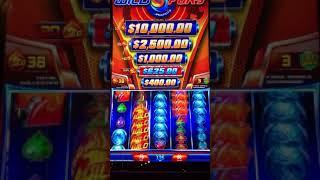 $50 BET on WILD FURY Dollar Slot Machine HAND PAY BONUS ROUND Wilds, Level Up, Free Spins!