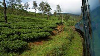 Sri Lanka(ශ්රී ලංකාව) by train - Nanu Oya to Bandarawela