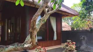 Minimalist Balinese Style House // wooden wall combined with alang-alang roof