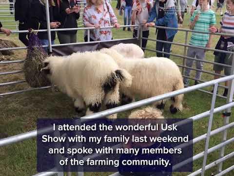 Back British Farming Day 2021