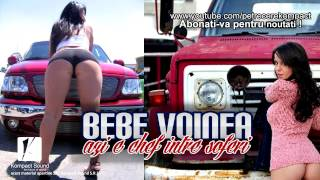 Muzica de Petrecere 2014 cu Bebe Voinea - Azi e chef intre soferi