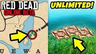 *SECRET* FAST MONEY EXPLOIT LOCATION in Red Dead Online! Fish Exploit & Money Tips RDR2!