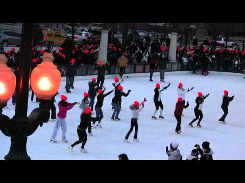 Flash Mob: Millennium Park on January 8th, 2011
