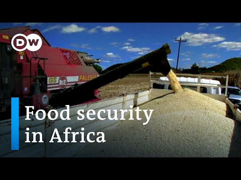 The future of farming in Africa: Fighting climate change and conflict | DW News 29 May 2021
