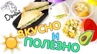 ЛАНЧ БОКС в школу | на работу | Полезная еда с собой | SCHOOL LUNCH IDEA