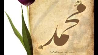 صلوا على سيدنا النبي- أحمد سعد