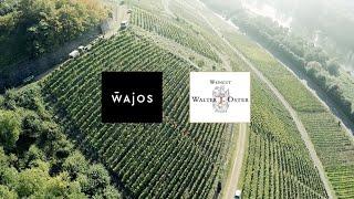 Weine von der Mosel – Tipps vom Winzer Michael Oster vom Mosel Weingut Walter J. Oster