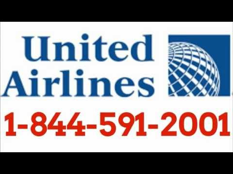 United Airlines Toll Free Number 2oo1