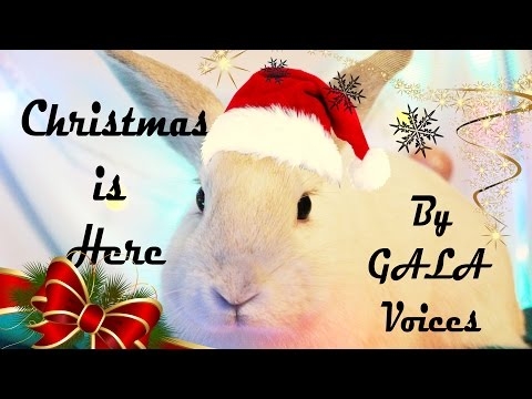 ☆ NEW CHRISTMAS SONG 2016 - 2017 | Christmas Is Here | by GALA Voices ☆
