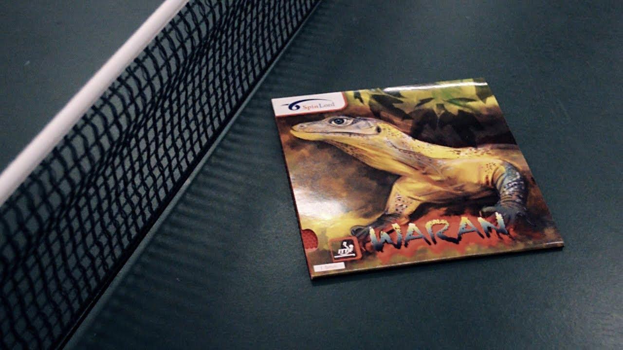 Download [TT] Spinlord Waran - Der Allesfresser?!