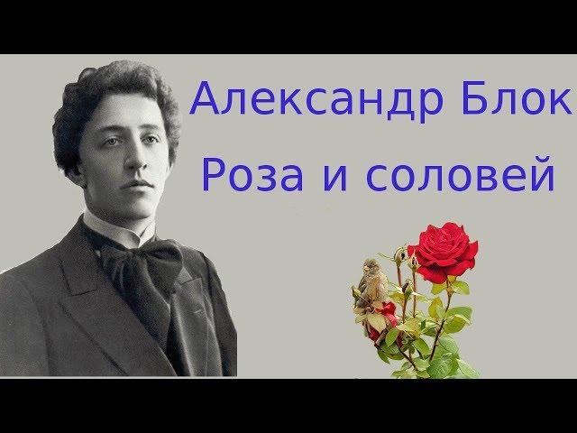 Изображение предпросмотра прочтения – ДарьяСкрябина читает произведение «Роза и соловей» А.А.Блока
