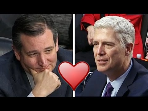 Ted Cruz Gushes All Over Neil Gorsuch