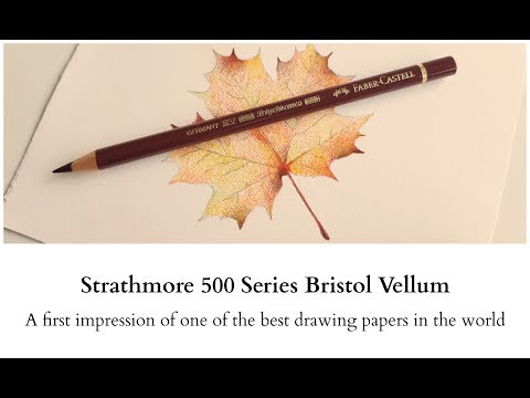 Strathmore 500 Series Bristol Vellum - A first impression